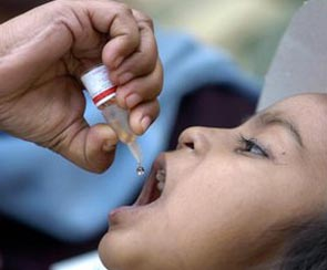 Pulse Polio Day | Redefine Web