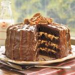 chocolate cake 150x150 How to Bake That Perfect Cake