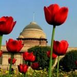 MughalGarden 150x150 Mughal Garden open for Visitors